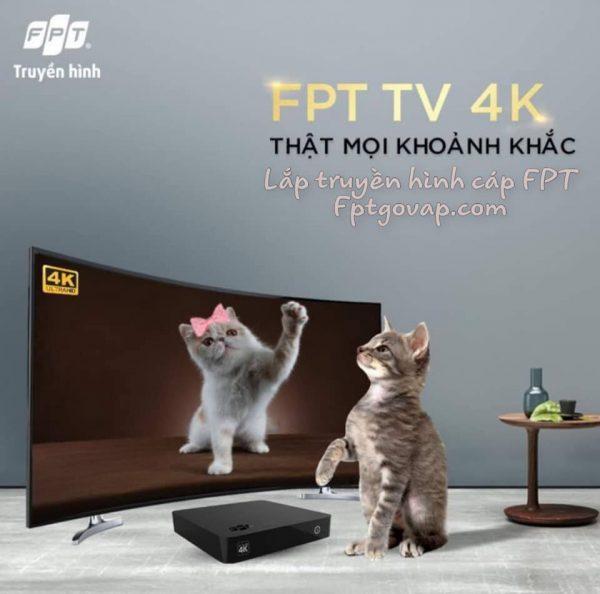 Truyền hình FPT Gò Vấp.